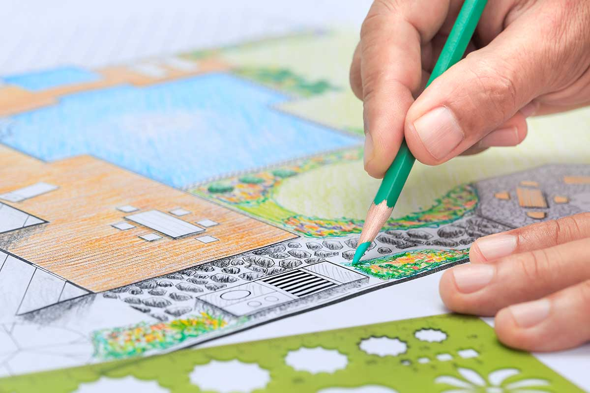 Landscape Designer drawing